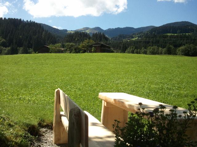 http://www.schatzbergblick.com/wp-content/uploads/2012-08-27-12.55.15.jpg